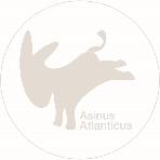 Asinus Atlanticus
